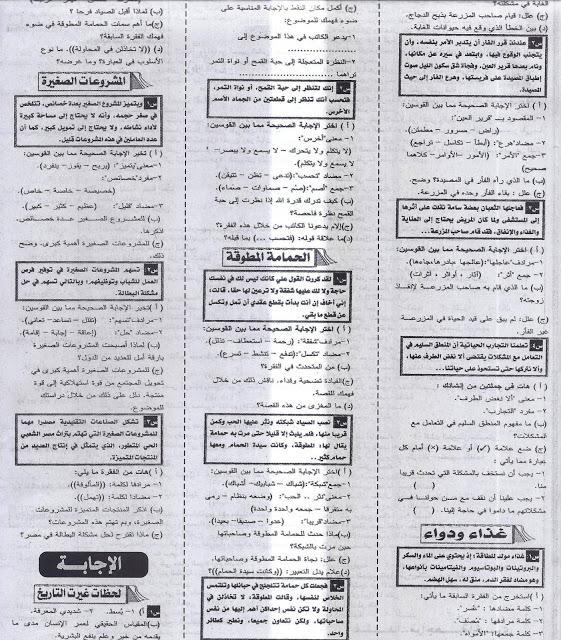 أهم فقرات القراءة المتكررة فى امتحان اللغة العربية للشهادة الإعدادية2