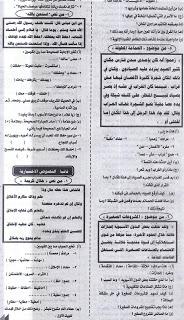 مراجعة ليلة الامتحان الجمهورية اللغة العربية4