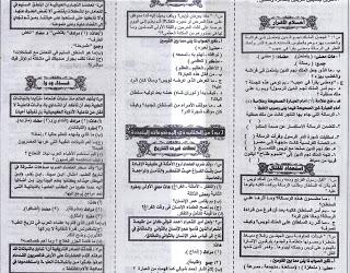 ملحق الجمهورية التعليمى فى اللغة العربية للشهادة الإعدادية2